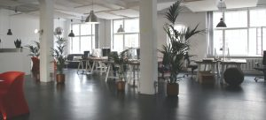 a modern open plan office space