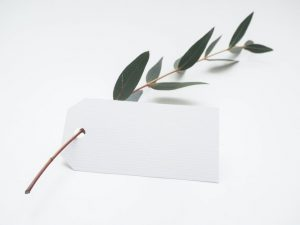 A blank white tag on a little branch.