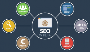 SEO elements divided in bubbly subgroups.